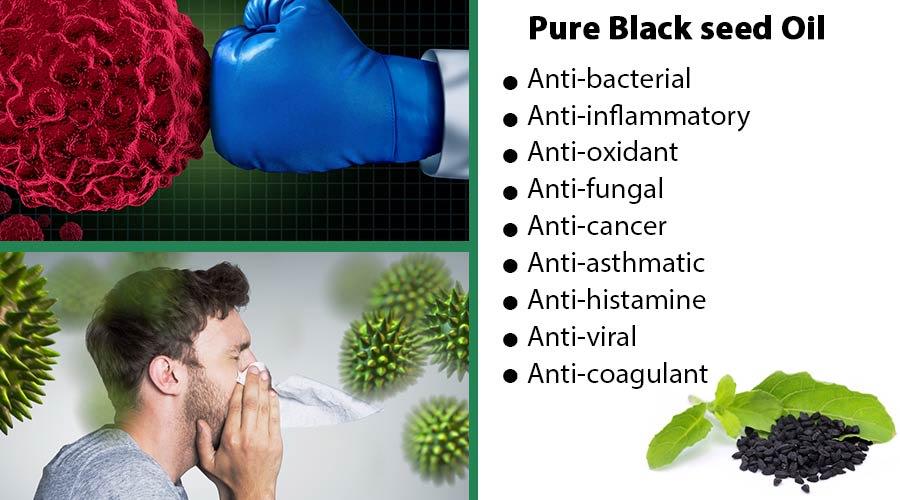 Nefertiti black seed oil benefits english