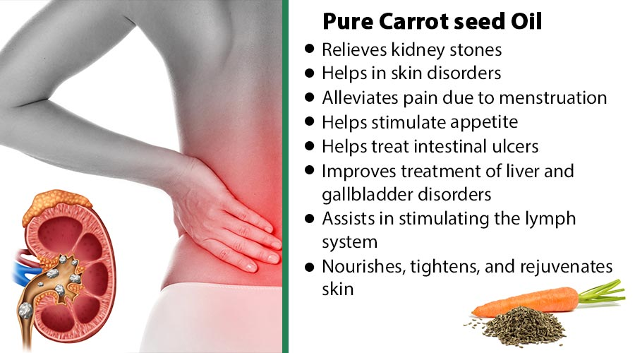 carrot Seed discribe