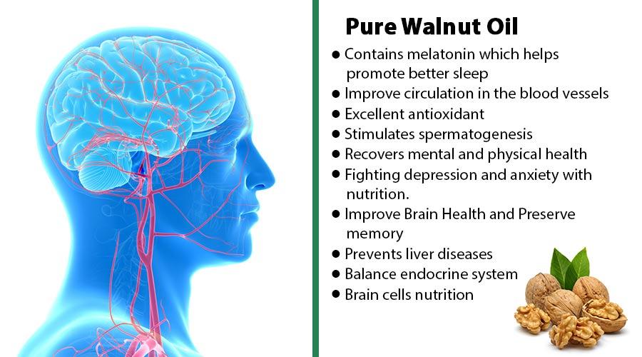 Walnut discrib