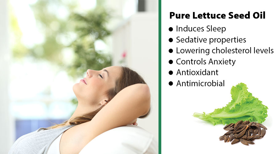 Benefits of Lettuce Seed Oil