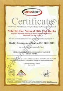 Nefertiti ISO 9001 2015