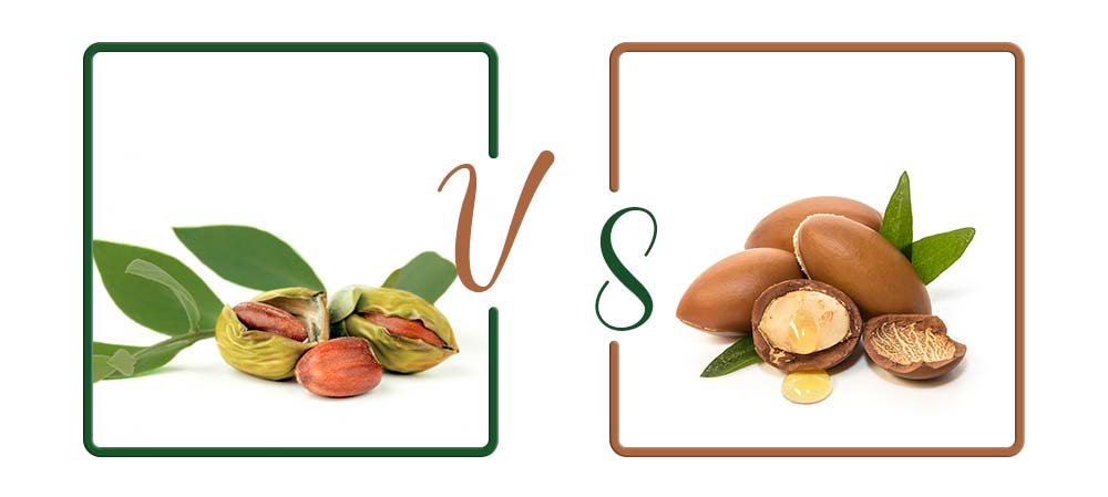 Jojoba VS Argan