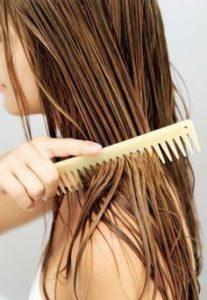 nefertiti article haircare
